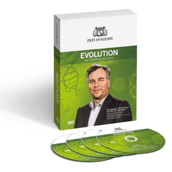 Probevideo Evolution