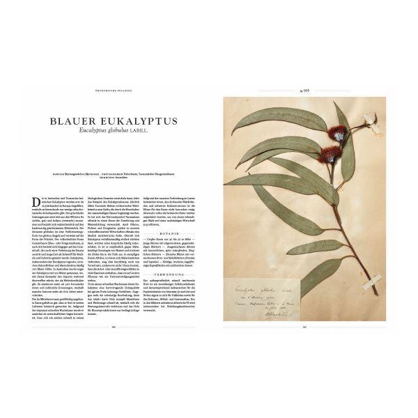 »Herbarium Orbis«