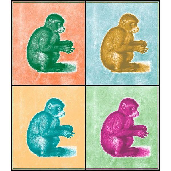 ZEIT-Sonderedition »Monkey«