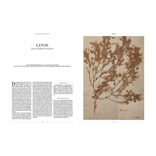 »Herbarium Orbis« das große Buch der Kräuter und Pflanzen