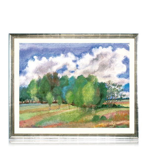 Grass, Günter: »Sommerlandschaft mit Birken« (2003)