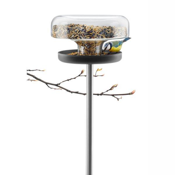 Vogelfutterspender aus Glas