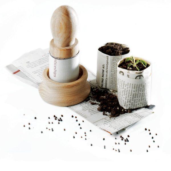 Seedling Starter Set
