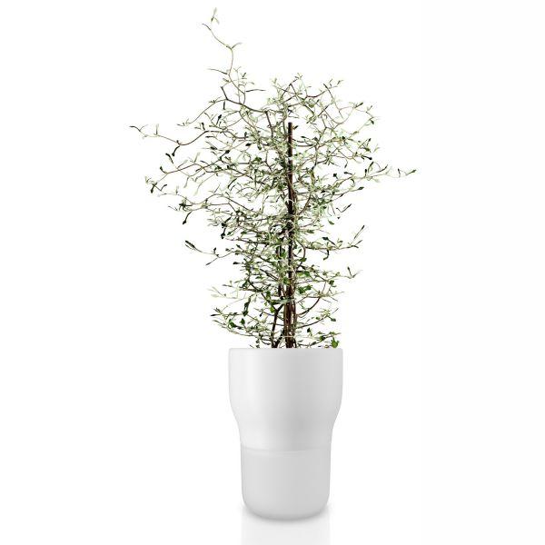 Blumentopf