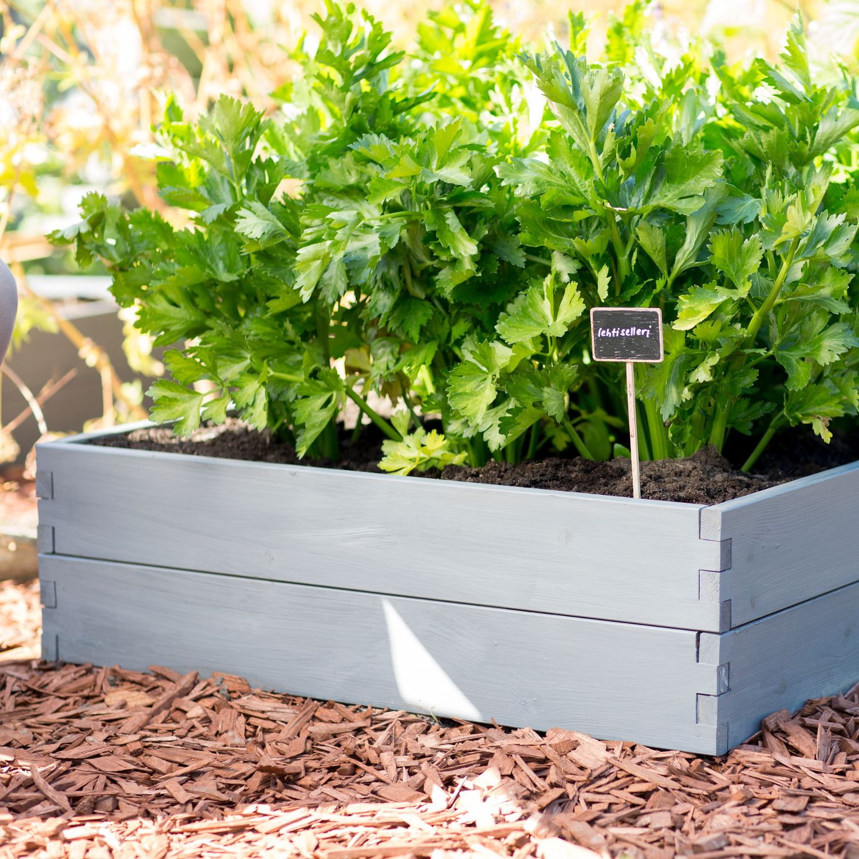 hochbeet grow box blumen pflanzen garten balkon sortiment die zeit shop. Black Bedroom Furniture Sets. Home Design Ideas