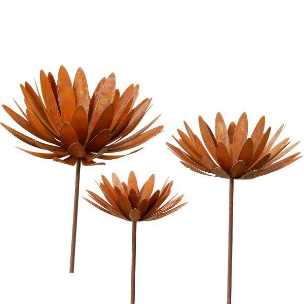 Gartenstecker-Blumenset »Chrysantheme«
